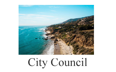 City Council Information